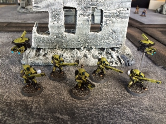 9 Painted Tau